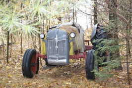 Our old tractor, hidden among the trees